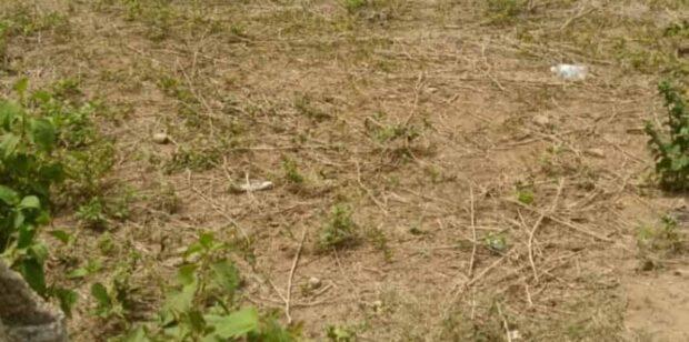 6 PLOTS OF LAND FOR SALE @ IKORODU